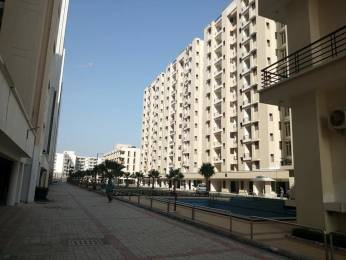 1190 sqft, 2 bhk Apartment in Builder Project Sector 115 Mohali, Mohali at Rs. 33.9500 Lacs
