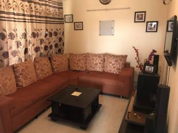 1865 sqft, 3 bhk Apartment in Builder Dwarka Dham Appartments Sector 23 Dwarka, Delhi at Rs. 28000