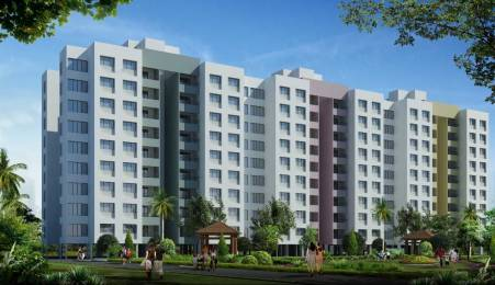 1200 sqft, 3 bhk Apartment in Builder Project Nashik Pune Highway, Nashik at Rs. 37.2700 Lacs