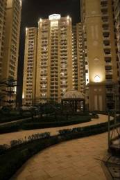 1970 sqft, 3 bhk Apartment in Purvanchal Royal City CHI 5, Greater Noida at Rs. 80.0000 Lacs