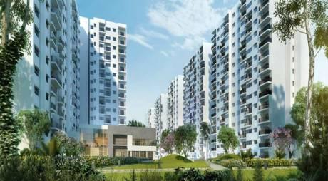 1023 sqft, 2 bhk Apartment in Godrej Avenues Yelahanka, Bangalore at Rs. 52.0000 Lacs