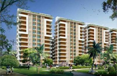 3032 sqft, 3 bhk Apartment in Bee Gee Palm Village Sector 126 Mohali, Mohali at Rs. 80.0000 Lacs