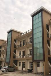 1350 sqft, 3 bhk Apartment in Primary Arcadia Platinum Homes Sector 124 Mohali, Mohali at Rs. 25.0000 Lacs