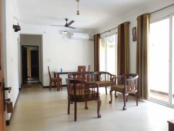 1022 sqft, 2 bhk Apartment in Builder Project Siolim, Goa at Rs. 75.0000 Lacs
