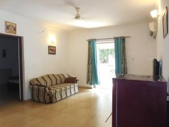 775 sqft, 1 bhk Apartment in Builder Project Arpora, Goa at Rs. 65.0000 Lacs