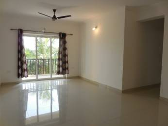 1431 sqft, 3 bhk Apartment in Builder Project Duler Ground Road, Goa at Rs. 82.0000 Lacs
