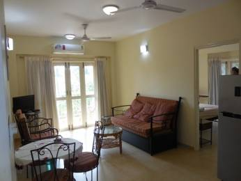 678 sqft, 1 bhk Apartment in Builder Project Arpora, Goa at Rs. 39.5000 Lacs