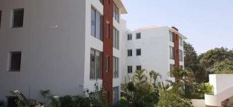 1350 sqft, 2 bhk Apartment in Builder Candolim Apartments Candolim, Goa at Rs. 1.2500 Cr