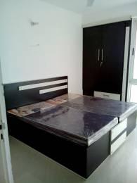 923 sqft, 2 bhk Apartment in Unique My Haveli Ajmer Road, Jaipur at Rs. 11000