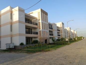 1445 sqft, 3 bhk BuilderFloor in Puri VIP Floors Sector 81, Faridabad at Rs. 16000