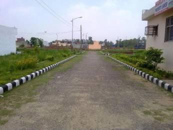 1100 sqft, Plot in Builder Project Jalandhar CanttJandiala Road, Jalandhar at Rs. 8.0000 Lacs