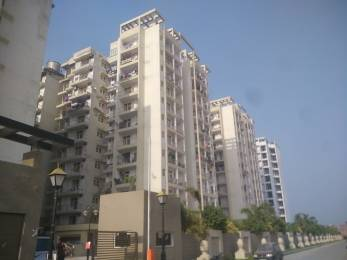 940 sqft, 2 bhk BuilderFloor in MR Shalimar City Pasaunda, Ghaziabad at Rs. 36.0000 Lacs
