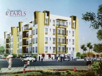 1336 sqft, 3 bhk Apartment in Builder Rajdhany pearl Kalyani Sagar Path, Guwahati at Rs. 40.0000 Lacs