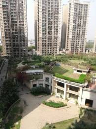 1685 sqft, 3 bhk Apartment in ATS Advantage Ahinsa Khand 1, Ghaziabad at Rs. 26000