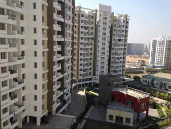 942 sqft, 2 bhk Apartment in Guardian Hill Shire Wagholi, Pune at Rs. 12000