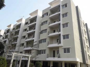 1250 sqft, 2 bhk Apartment in Builder Pppp Amaravathi, Vijayawada at Rs. 31.2500 Lacs
