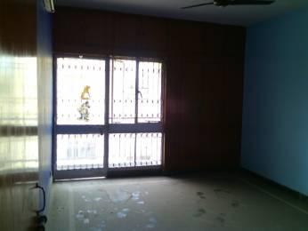 1250 sqft, 3 bhk Apartment in DDA Mig Flats Sarita Vihar Sarita Vihar, Delhi at Rs. 28000