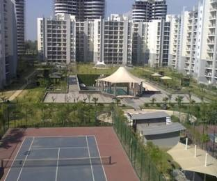 1110 sqft, 2 bhk Apartment in Omaxe Grand Sector 93B, Noida at Rs. 19000