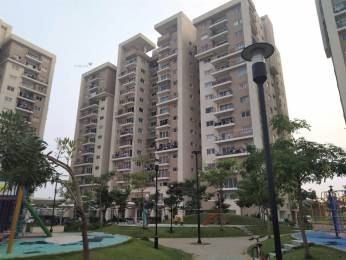 1300 sqft, 2 bhk Apartment in PBEL Property Development and Shapoorji Pallonji City Kelambakkam, Chennai at Rs. 16000