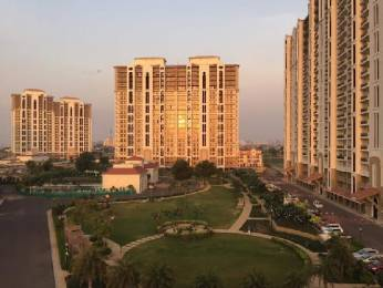 2364 sqft, 4 bhk Apartment in DLF New Town Heights 2 Sector-86 Gurgaon, Gurgaon at Rs. 1.1700 Cr