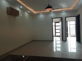 1309 sqft, 3 bhk BuilderFloor in Builder Project Sainik Colony, Faridabad at Rs. 42.0000 Lacs