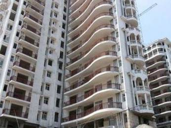 1750 sqft, 3 bhk Apartment in SDS NRI Residency Sector 45, Noida at Rs. 19000