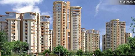 1644 sqft, 3 bhk Apartment in SDS NRI Residency Sector 45, Noida at Rs. 18000