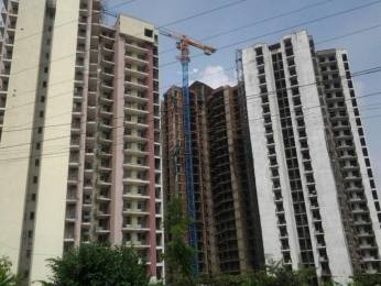 1385 sqft, 3 bhk Apartment in Amrapali Pan Oasis Sector 70, Noida at Rs. 18000