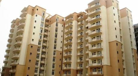 1550 sqft, 3 bhk Apartment in Tulip Petals Sector 89, Gurgaon at Rs. 68.0000 Lacs