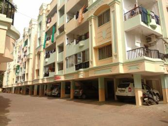 1560 sqft, 3 bhk Apartment in Builder Project Gulmohar Colony, Bhopal at Rs. 47.0000 Lacs