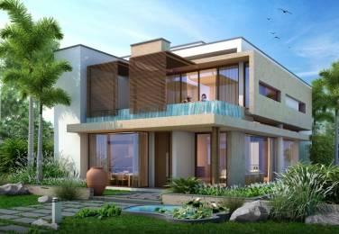 6500 sqft, 4 bhk Villa in Northstar Hillside Gandipet, Hyderabad at Rs. 3.8513 Cr