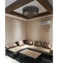1180 sqft, 3 bhk BuilderFloor in Builder metro town Zirakpur punjab, Chandigarh at Rs. 36.1000 Lacs