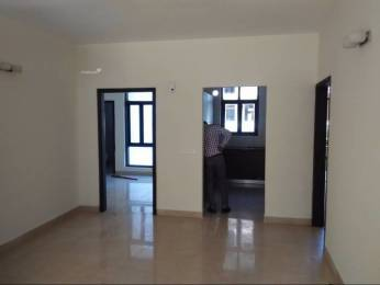 1725 sqft, 3 bhk Apartment in Builder omaxe cassia floors Mullanpur New Chandigarh, Chandigarh at Rs. 70.0000 Lacs