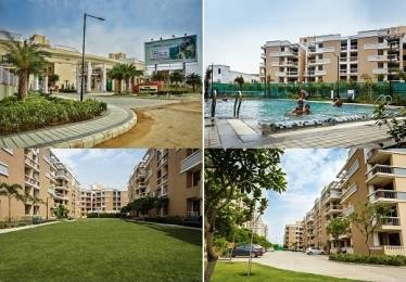 445 sqft, 1 bhk Apartment in Eldeco Mystic Greens Omicron, Greater Noida at Rs. 19.0000 Lacs