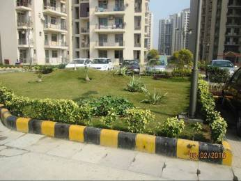 1310 sqft, 3 bhk Apartment in Jaypee Kosmos Sector 134, Noida at Rs. 69.0000 Lacs