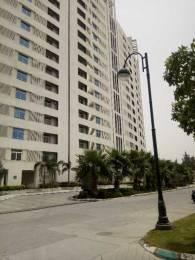 1700 sqft, 2 bhk Apartment in Jaypee Sea Court Swarn Nagri, Greater Noida at Rs. 26000