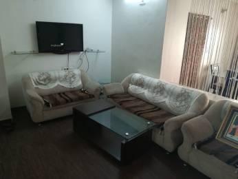 2755 sqft, 5 bhk Villa in Builder Project Navrangpura, Ahmedabad at Rs. 85000