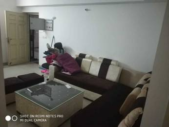 1295 sqft, 3 bhk Apartment in Supertech CapeTown Sector 74, Noida at Rs. 22000