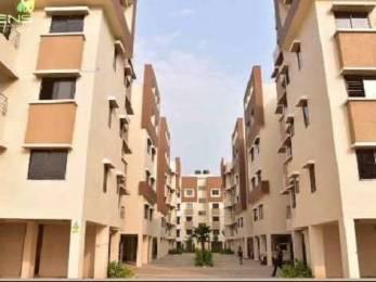 1035 sqft, 3 bhk Apartment in  Mayfair Greens 1 Matigara, Siliguri at Rs. 33.1200 Lacs