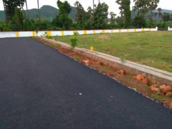1098 sqft, Plot in Builder sainkvihar Vizianagaram Road, Vizianagaram at Rs. 6.7100 Lacs