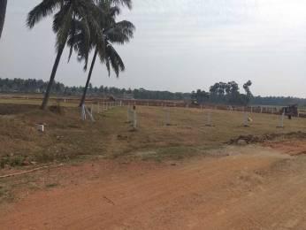 1800 sqft, Plot in Builder Saink vihar Vizianagaram Road, Vizianagaram at Rs. 11.0000 Lacs
