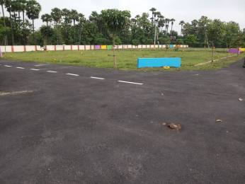1800 sqft, Plot in Builder Saink vihar Korada Street, Vizianagaram at Rs. 11.0000 Lacs