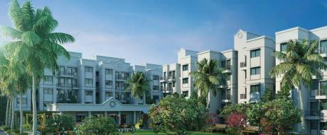 305 sqft, 1 bhk Apartment in Peninsula Address One Phase 1 Gahunje, Pune at Rs. 25.0006 Lacs