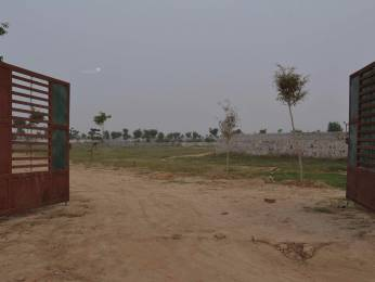 1000 sqft, Plot in Builder Ready Collector NA Bungalow Plot In Talegaon Near Kanhe Kanhephata, Pune at Rs. 7.0000 Lacs