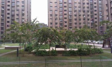 1202 sqft, 2 bhk Apartment in Safal Parishkaar Maninagar East, Ahmedabad at Rs. 46.0000 Lacs