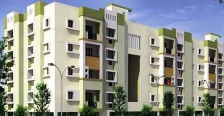 1442 sqft, 2 bhk Apartment in Covai Covai Surabi Trichy Road, Coimbatore at Rs. 74.2784 Lacs