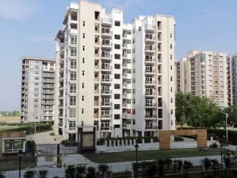 1600 sqft, 3 bhk Apartment in Omaxe Spa Village Sector 78, Faridabad at Rs. 65.0000 Lacs