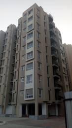 867 sqft, 2 bhk Apartment in Siddha Aangan Bagru, Jaipur at Rs. 18.5100 Lacs