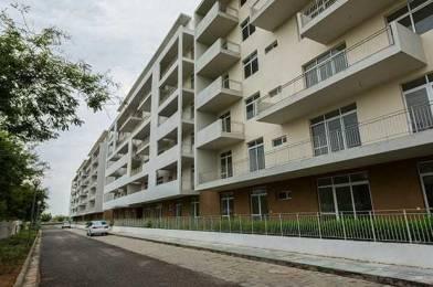 1865 sqft, 3 bhk Apartment in Vatika The Park Thikariya, Jaipur at Rs. 43.5100 Lacs