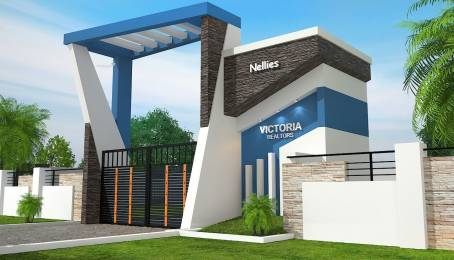 1050 sqft, 2 bhk Villa in Builder nellies Chittoor, Palakkad at Rs. 24.0000 Lacs